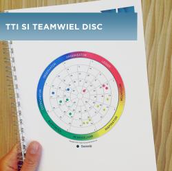 tti_teamwiel